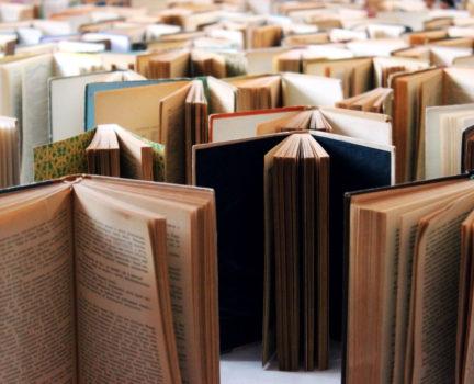 Literatures en context